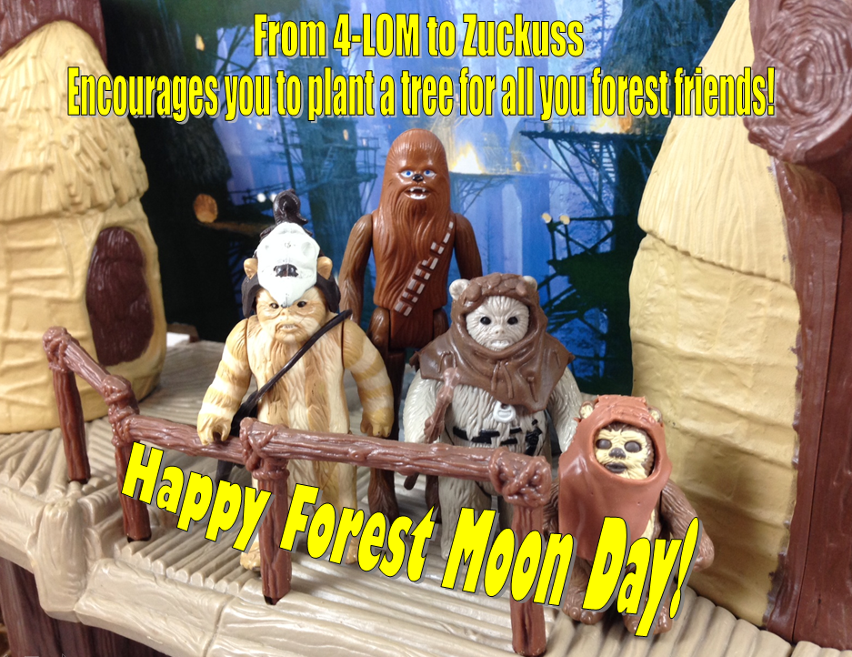 Forest_Moon_Day